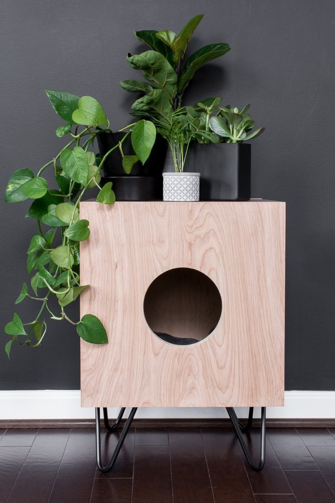How to Build a Stunning Cat House Side Table for Your Kitties