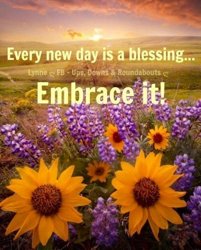 New Day Is A Blessing To Embrace Quote Via Ups Downs Roundabouts At Www Facebook Com Upsdownsroundabouts Embrace Quotes New Life Quotes Prayer Quotes