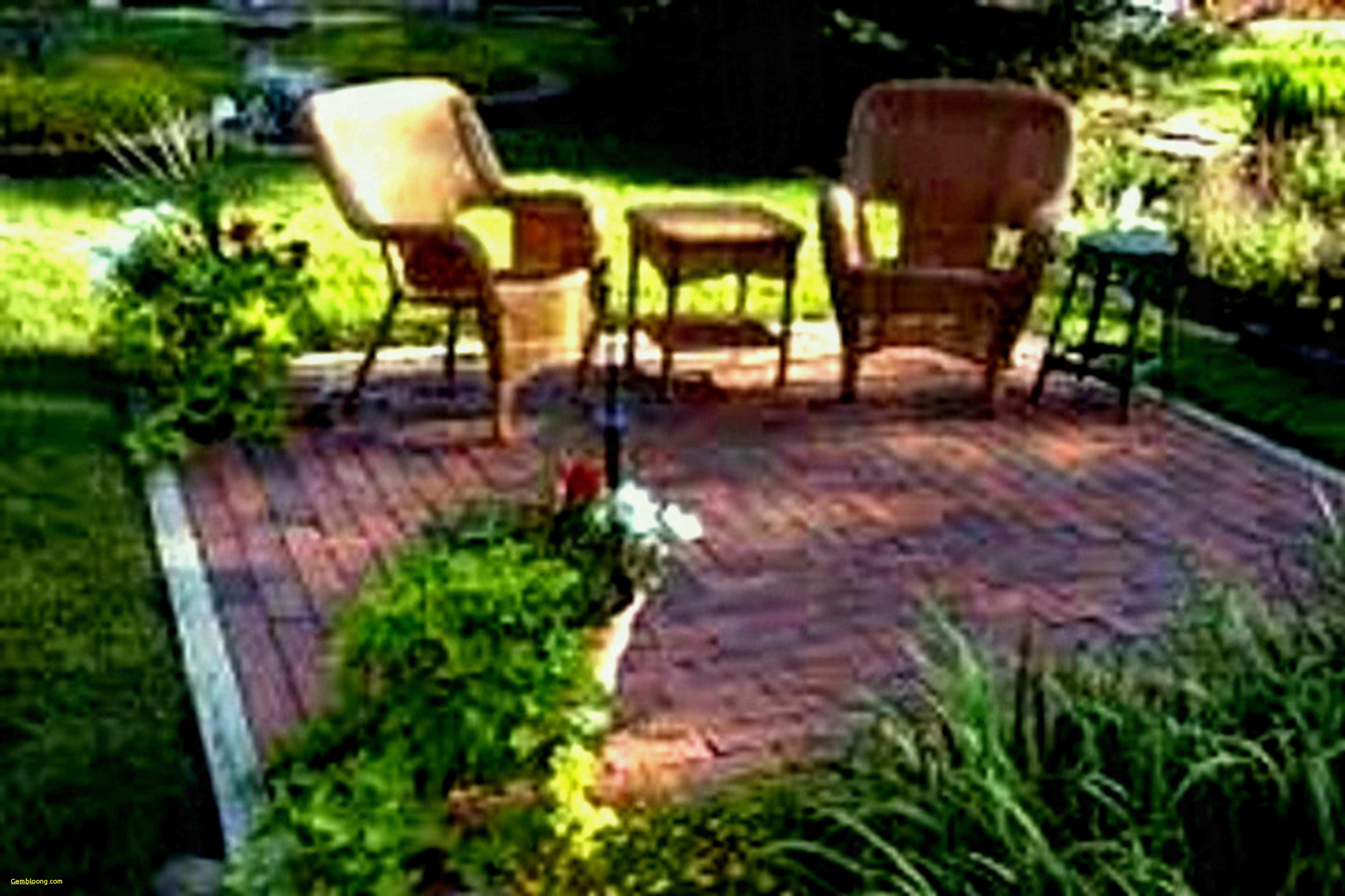 Formidable Backyard Ideas No Grass Tyuka Info Small Backyard Design Small Backyard Landscaping Diy Backyard Landscaping