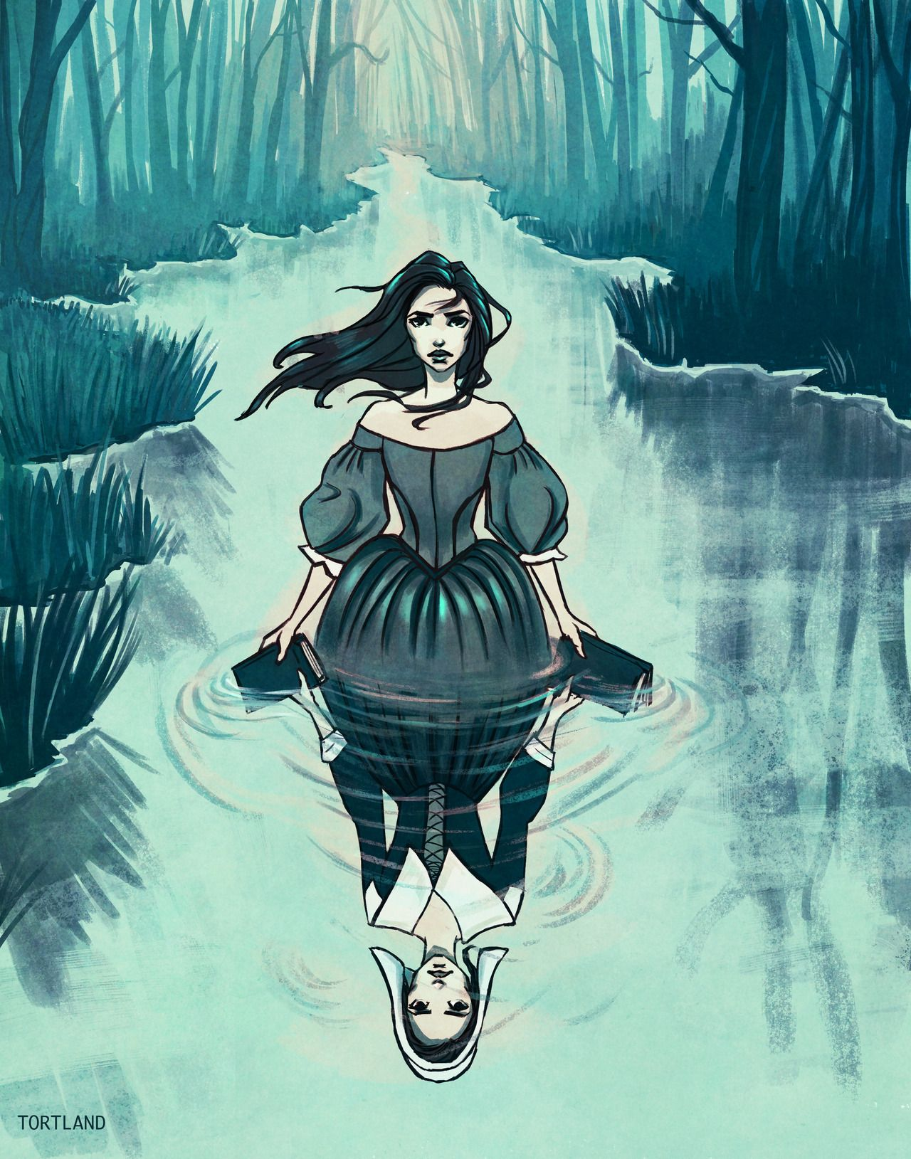 Christy Tortland Art The Witch Of Blackbird Pond First In