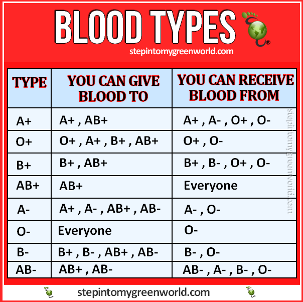 All you need to know about blood types - Who you can give ...
