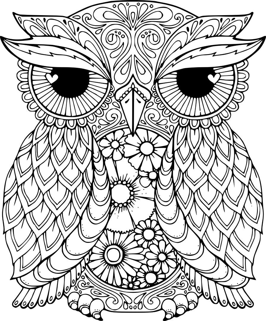 - Owl Coloring Pages (With Images) Owl Coloring Pages, Mandala