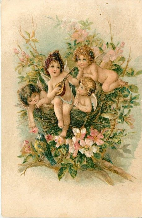 TO MY VALENTINE  MAY LOVE'S SWEET MUSICMAKE BRIGHT EACH DAY  four cupids in bird's nest, one plays mandolin