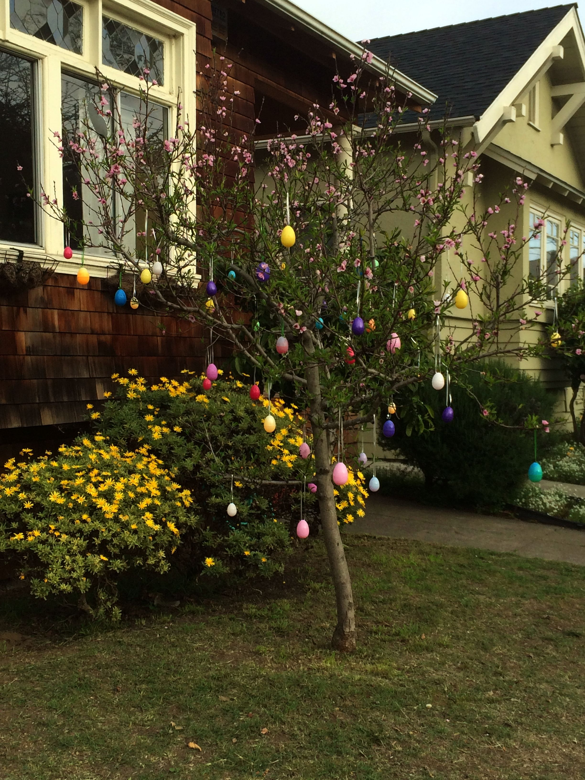 Great idea for the Easter Season.