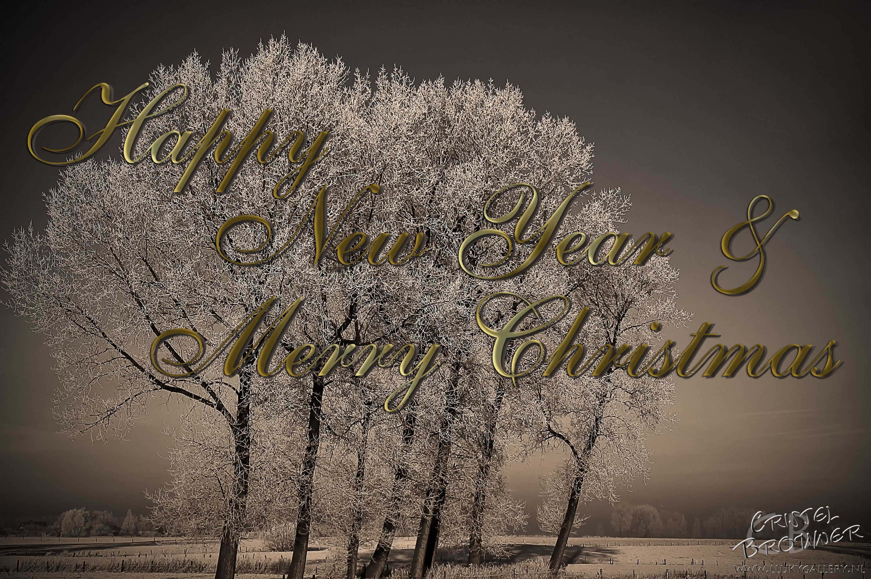 Wish you all a wonderful Christmas and may all your dreams come true in 2016!  xxx