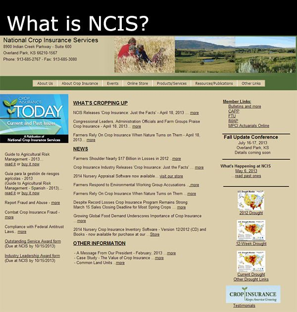 What Is Ncis Cropinsurance Crop Insurance Insurance Industry