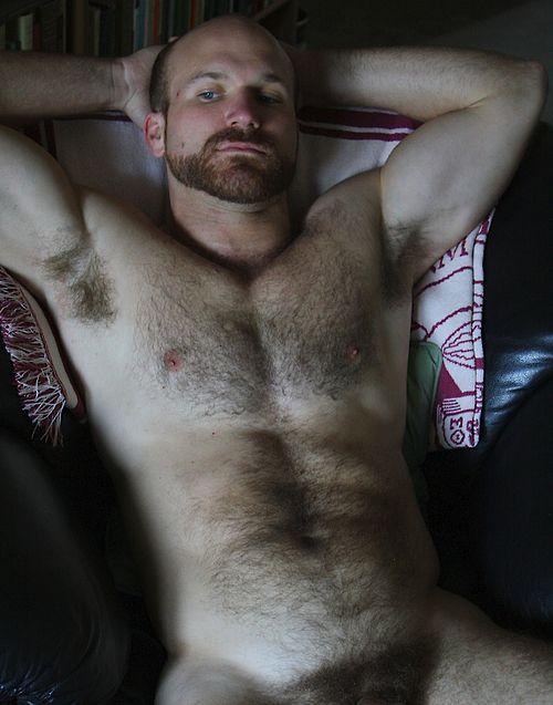 Tumblr hairy gay
