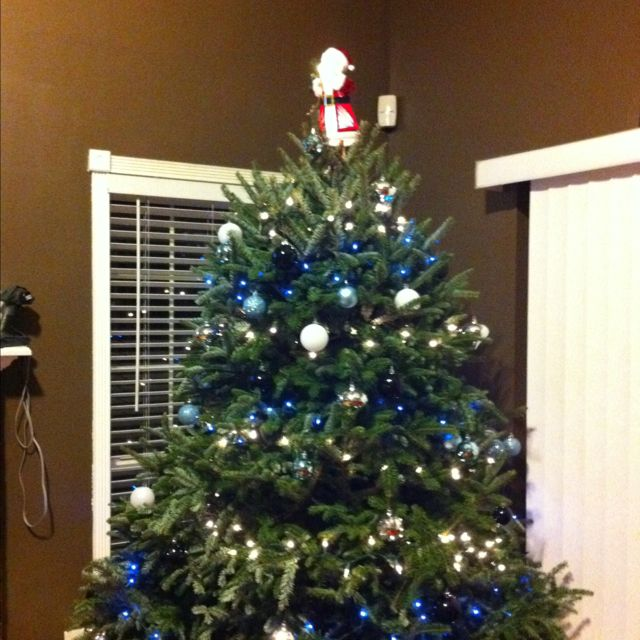 Carolina Panthers Christmas tree. I am going to do my tree these colors!! 0a527c314