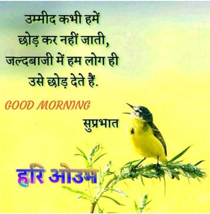 Health Wishes Quotes In Hindi   Health Wishes Quotes in ...