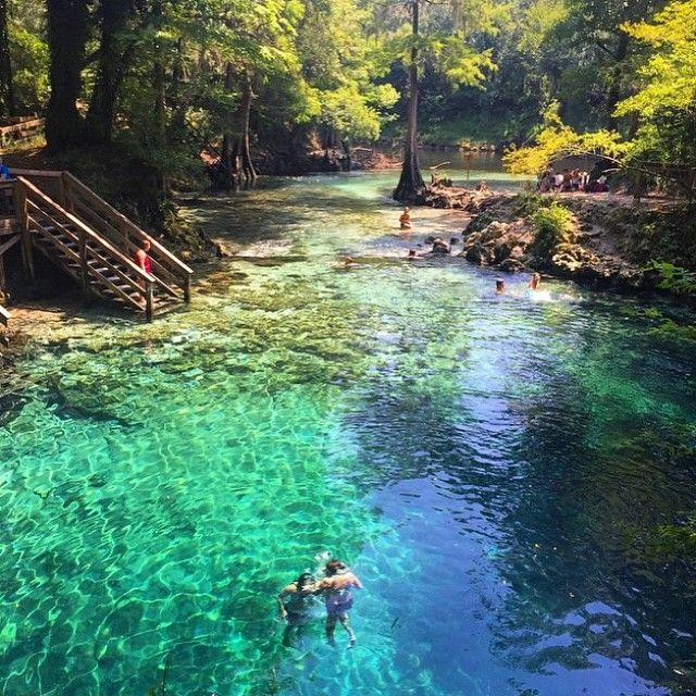 Madison Blue Springs State Park. :@dmf5471  Tag #pureflorida and @pureflorida to share!