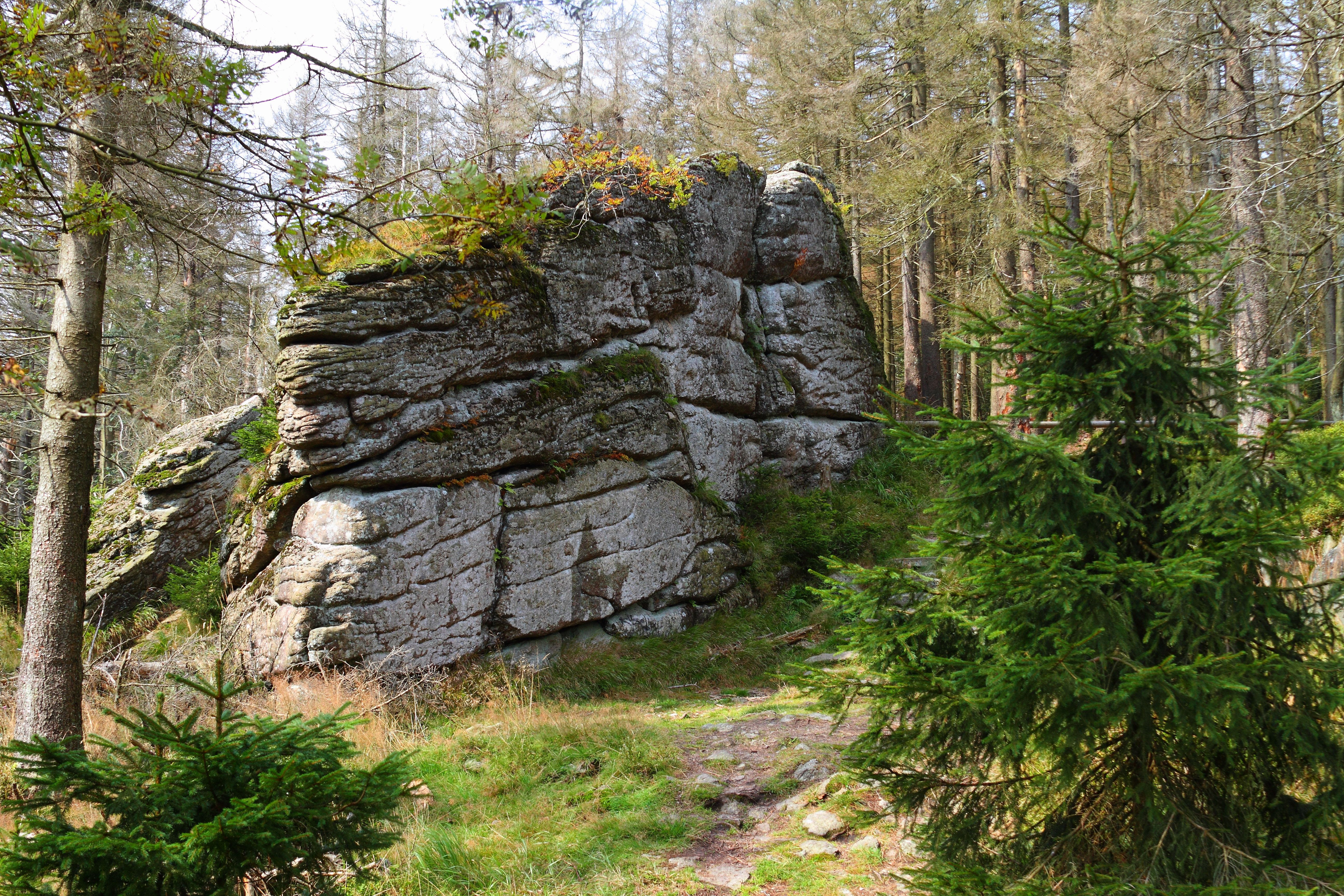 Just a piece of rock on the trail to the Achtermannshöhe