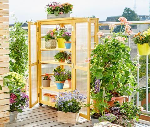 Balkon Gewachshaus Online Bestellen Bei Tchibo 323581 Gewachshaus Balkon Gewachs