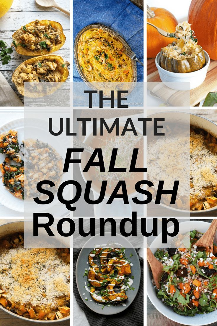 The Ultimate Fall Squash Round Up With Images Healthy
