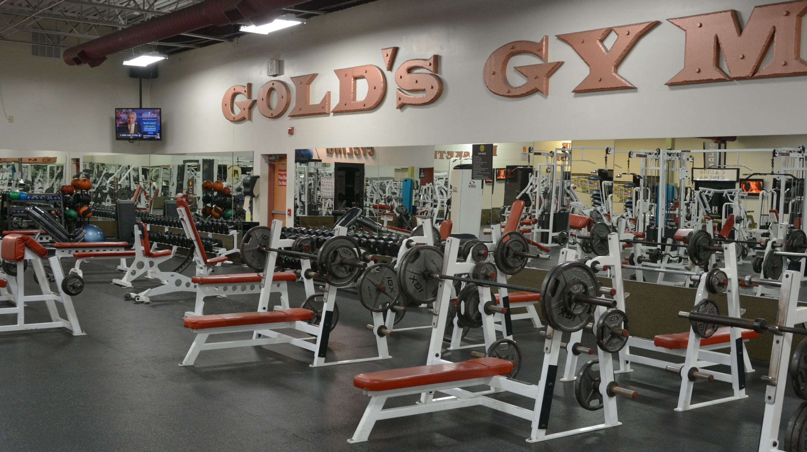 Gold S Gym Prices Gold S Gym Price List Guide Gym Prices Golds Gym Gym Membership