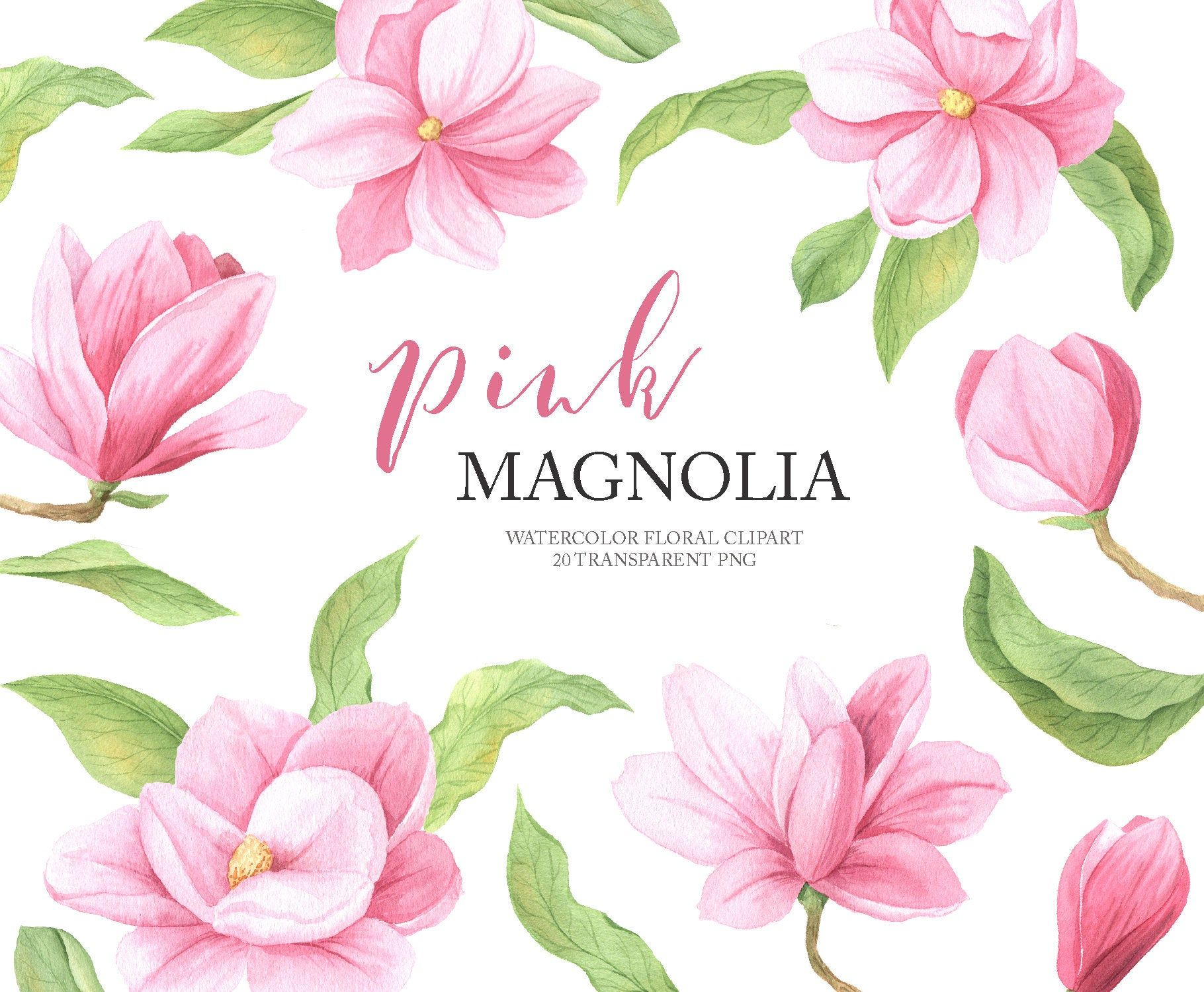 Watercolor Magnolia Flower Clipart Spring Pink Floral Clip Etsy Flower Clipart Floral Watercolor Flower Frame