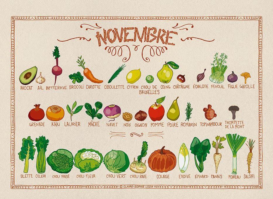 calendrier perp tuel des fruits l gumes de saison novembre design food fruit et legumes. Black Bedroom Furniture Sets. Home Design Ideas