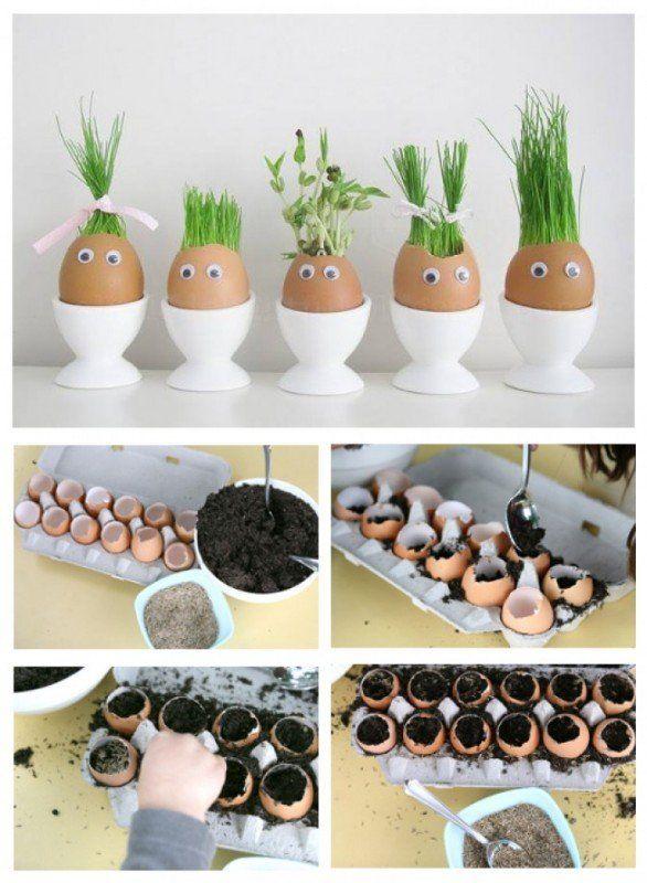 reciclar huevos para plantar plantitas