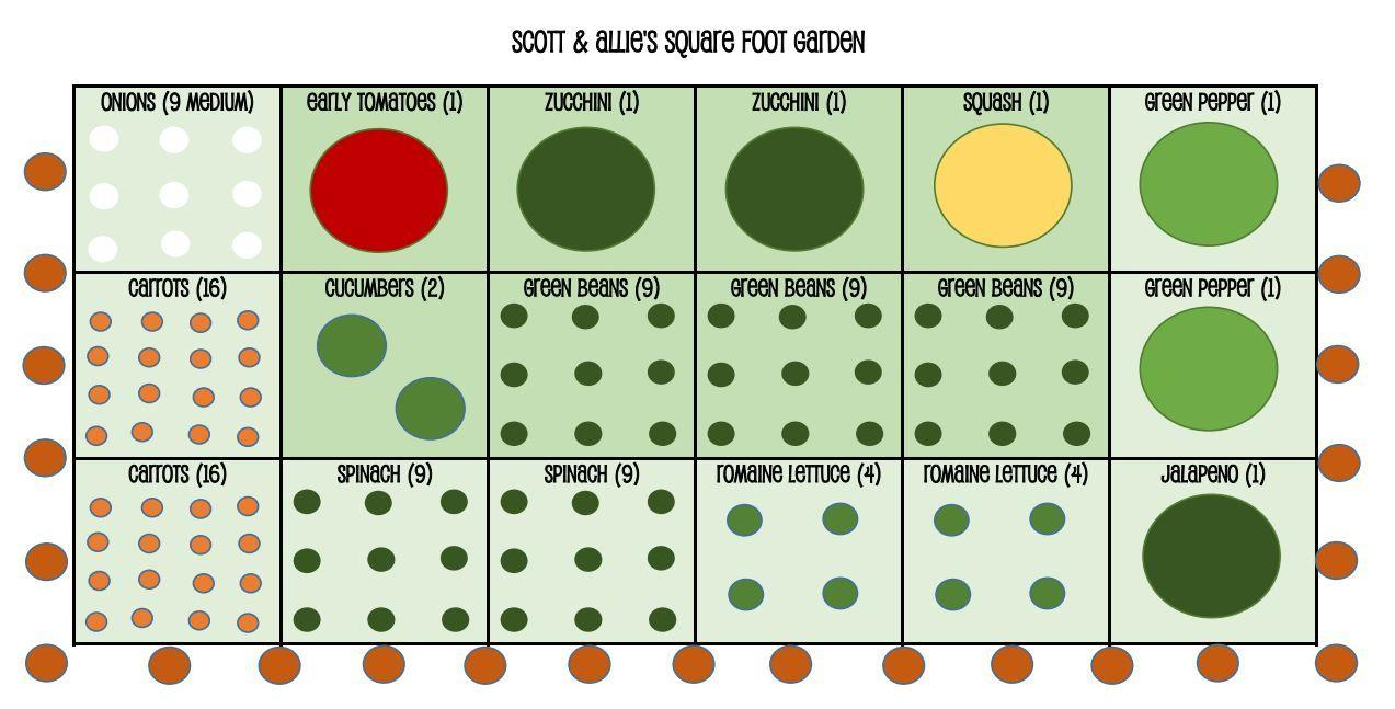 Scott Allies Square Foot Garden Jpg 1273 647 Square Foot Gardening Square Foot Gardening Plans Square Feet