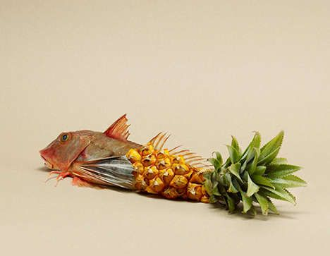 Food Mash-Up Photography - These Neat Food Photos Combine Snacks in an Unusual Way