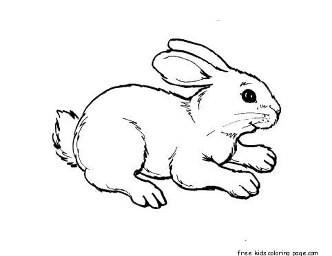Printable Kids Coloring Pages Animal Rabbit Colouring Pages