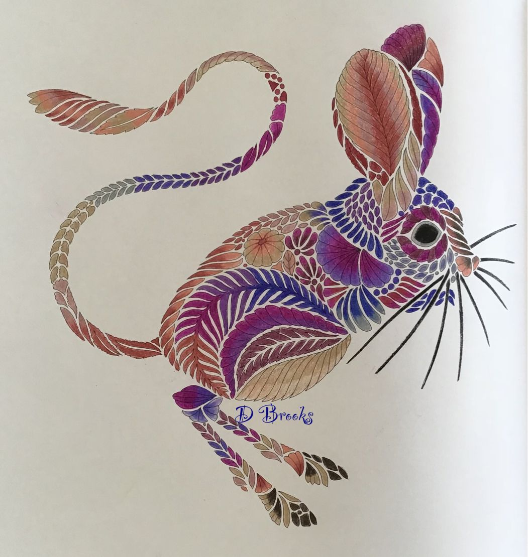 From Wildlife Wonders By Millie Marotta Millie Marotta Coloring Book Millie Marotta Coloring Book Art