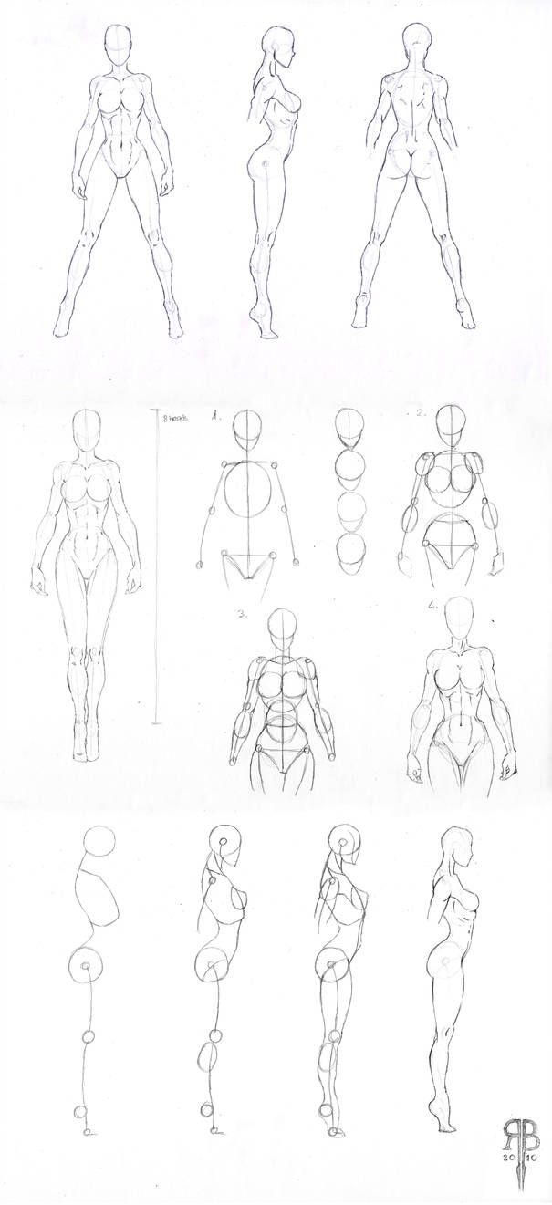 Photo of female body shapes part 2 by Rofelrolf on DeviantArt
