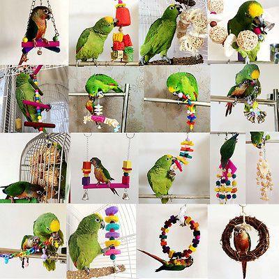 new design new arrive check out Jouet Suspendue pour oiseau perroquet perruche chaîne ...