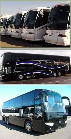 Divine Transportation Provides Quality And Safe Party Bus Rentals