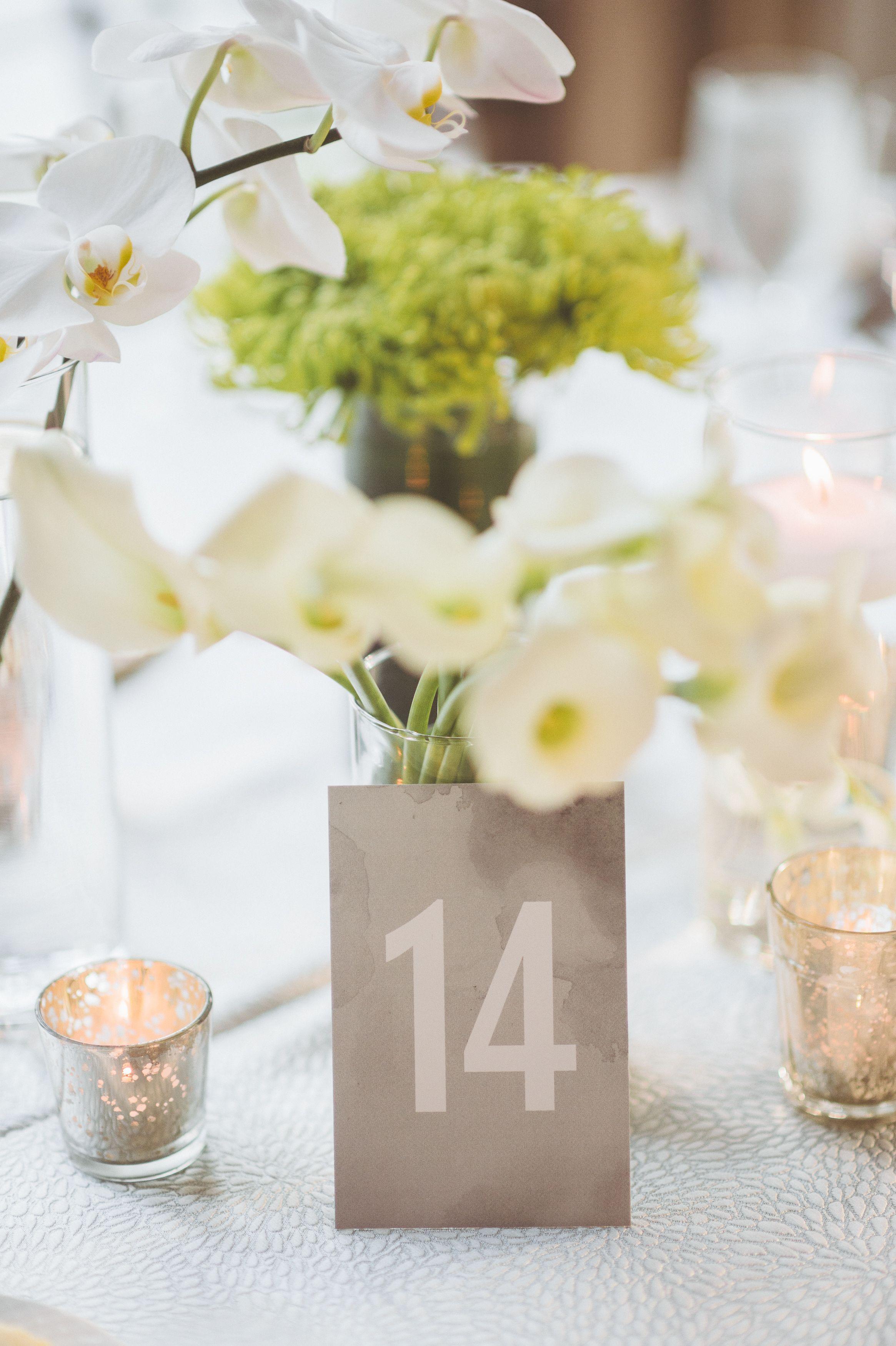 Tara Pollio Floral Event Design | luxury upscale wedding flowers ...