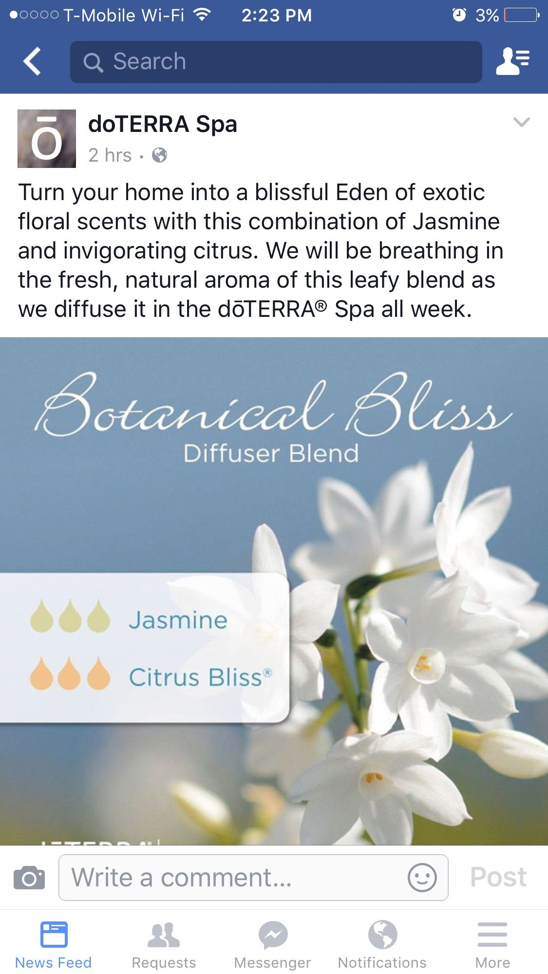 Pin by Keeyoung Leonard on Essential Oil Blends to diffuse