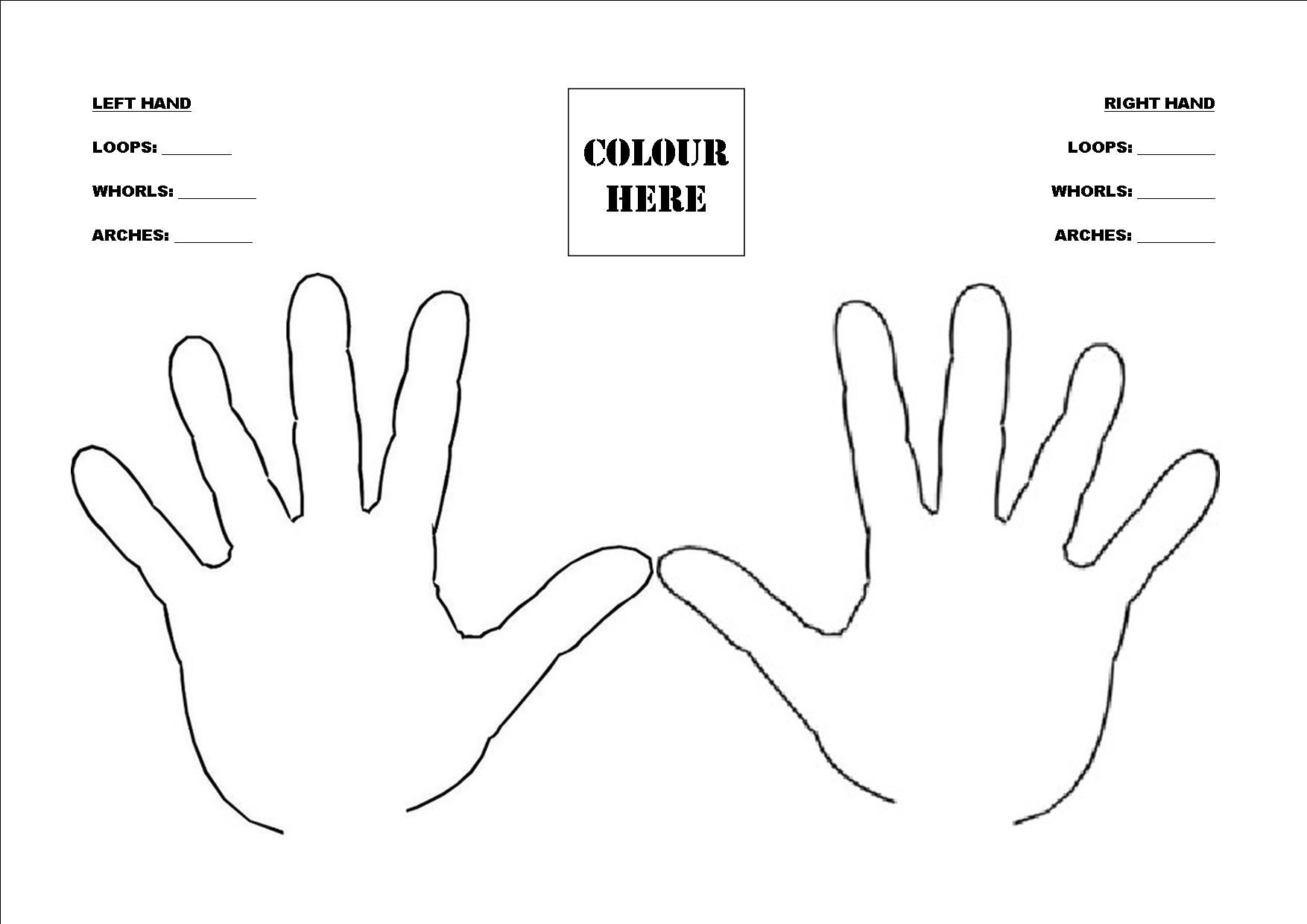 Fingerprint Worksheet Human Body Unit Human Body Worksheets Human Body Activities Human Body Unit [ 1240 x 1754 Pixel ]