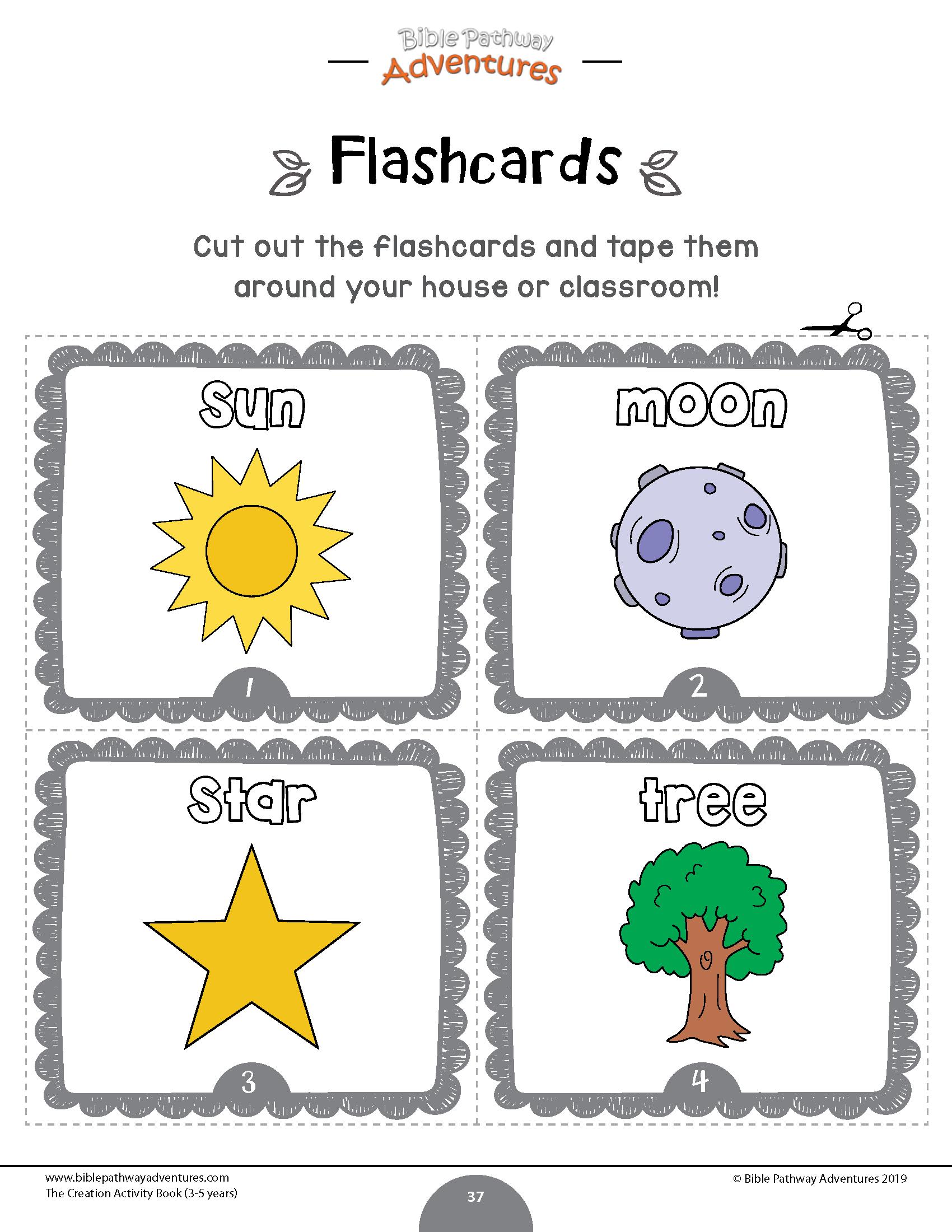 Creation Flashcards