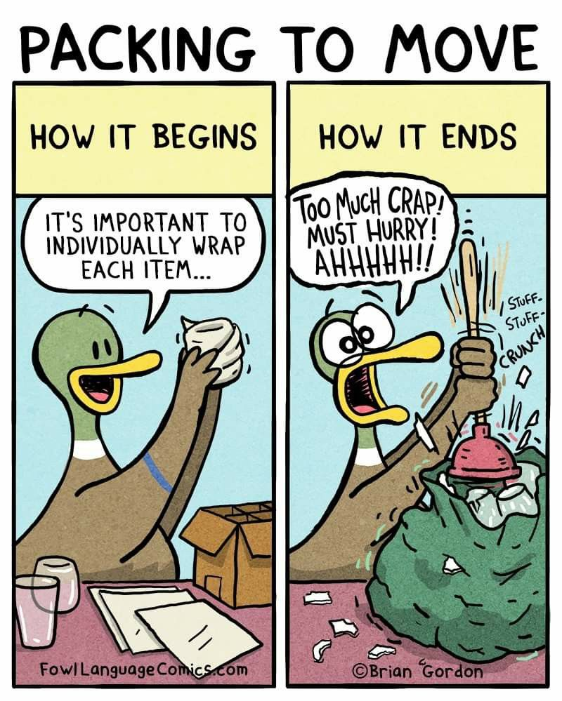 Image by mona shah on fowl language in 2020 packing to