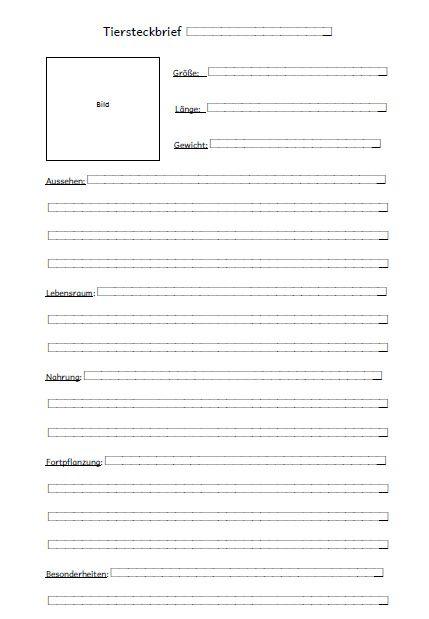 Kostenlose Steckbrief Vorlage Im Word Format 11