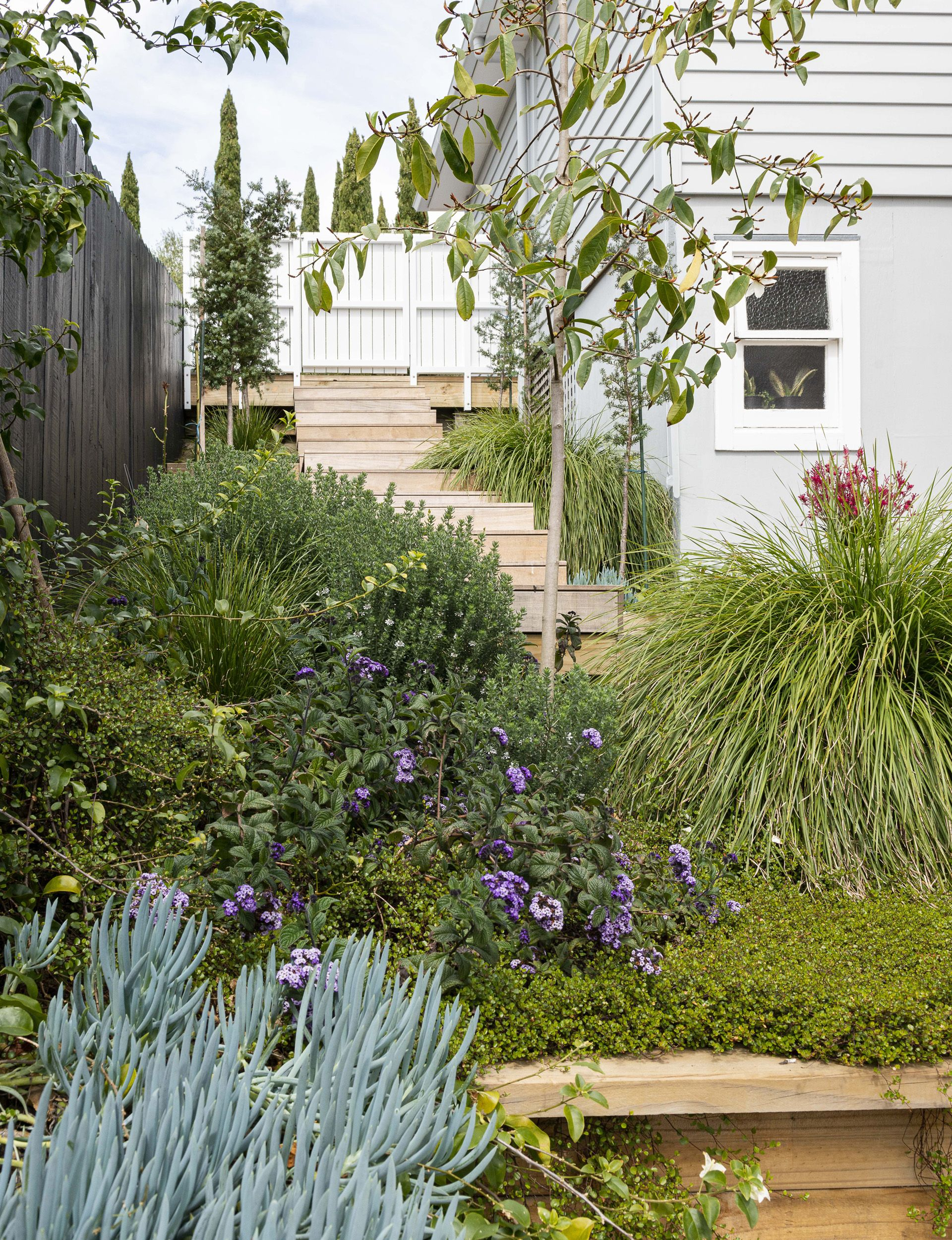 Nurse Turned Landscape Designer Builds A Garden For Family Birds