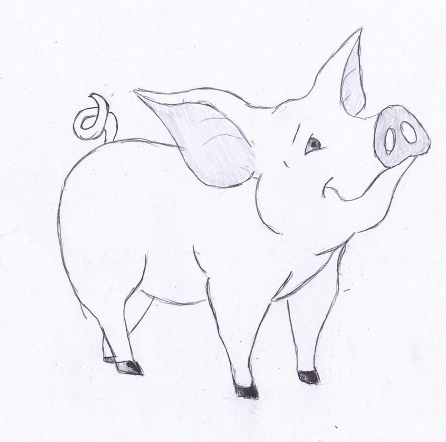 Картинка карандашом поросенка