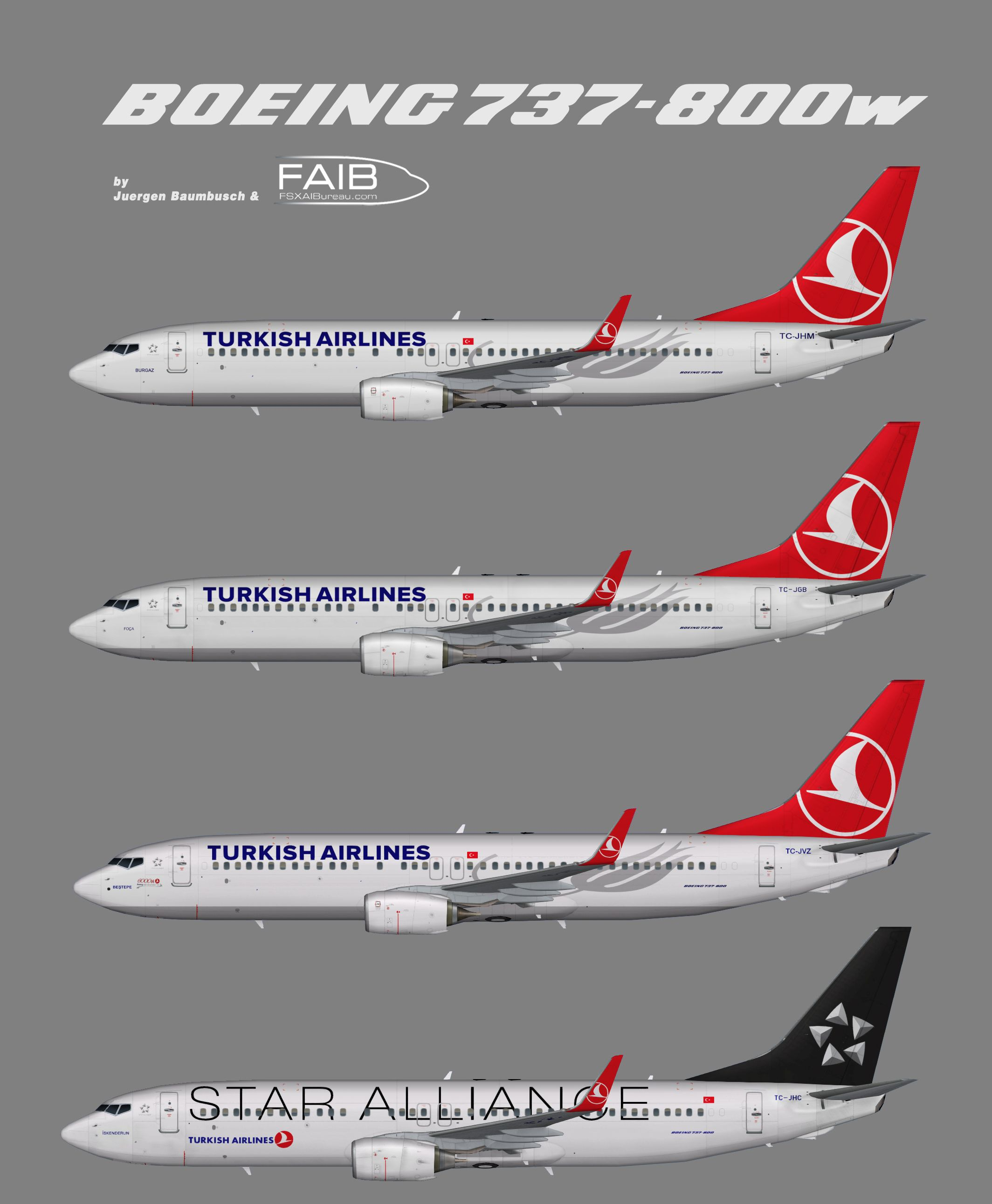 Turkish Airlines Boeing 737 800w