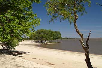 Playa Seré de Carmelo