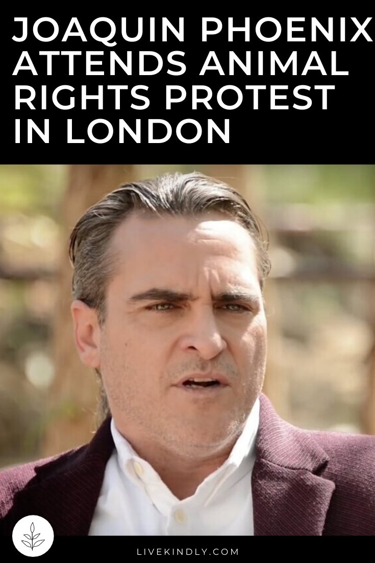 Joaquin Phoenix Attends Animal Rights Protest In London London Protest Animal Rights Joaquin