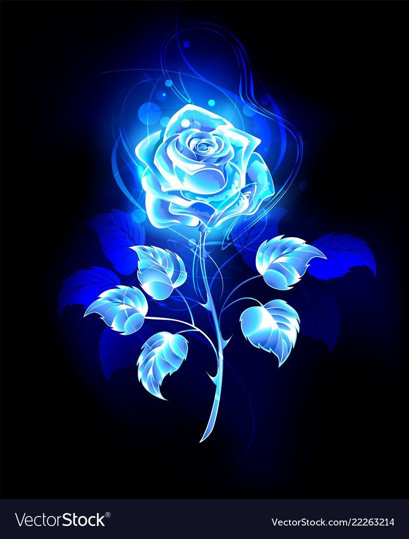 Burning blue rose vector image on | Blue roses wallpaper ...