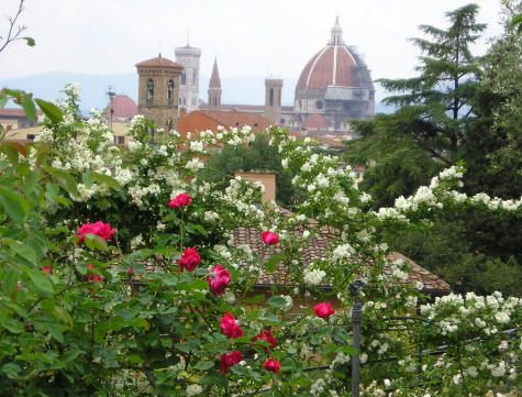A Definite Stop The Rose Garden Near Piazzale Michaelangelo In