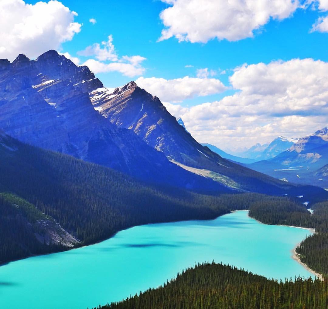 Peyto Lake, Alberta, Canada.