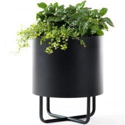 Photo of flowerpots