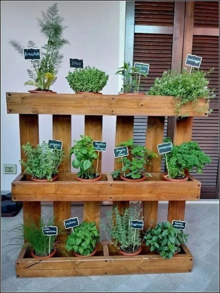 Photo of Indoor Gardens For Your Home