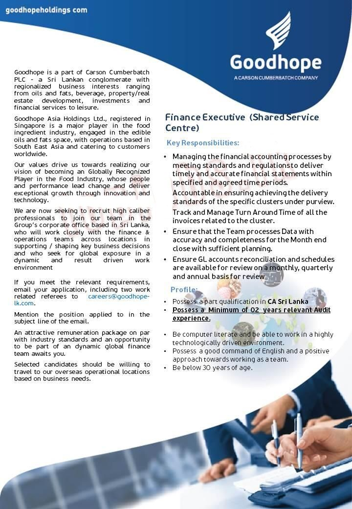Finance Executive Job Vacancy at Goodhope Asia Holdings