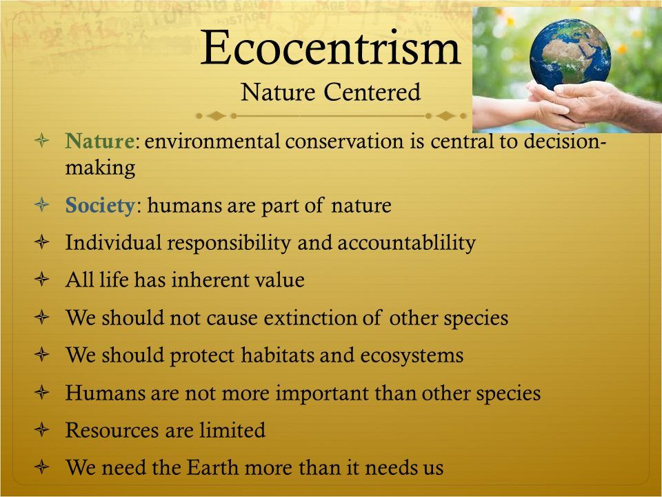 Ecocentrist