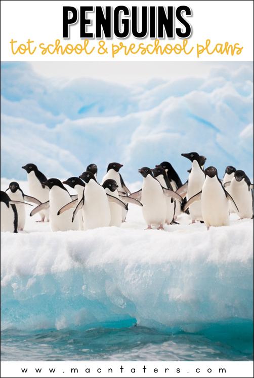 Penguin Theme Preschool And Tot School Plans