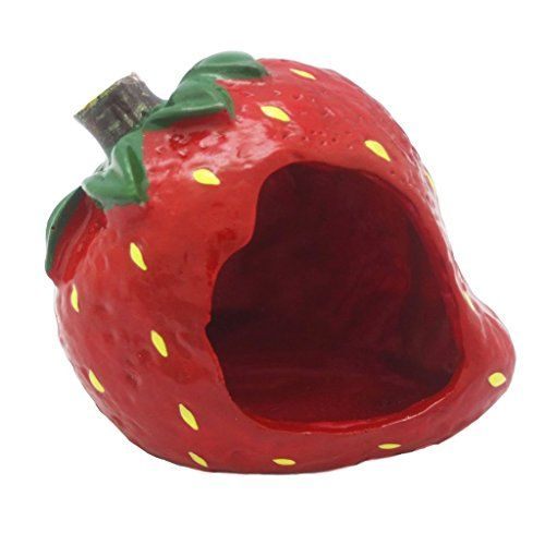 FatPet Small Animal Hideout Cute Strawberry Small Pet