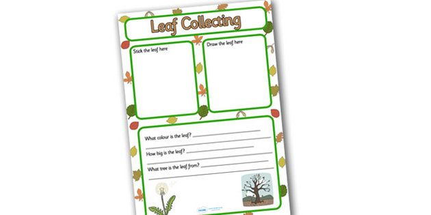 Leaf Collecting Writing Frame   Leaf Collecting, Leaves, Writing Frame,  Writing, Colour And Write, Frames For Writing, Writing Template, Writing  Aid,