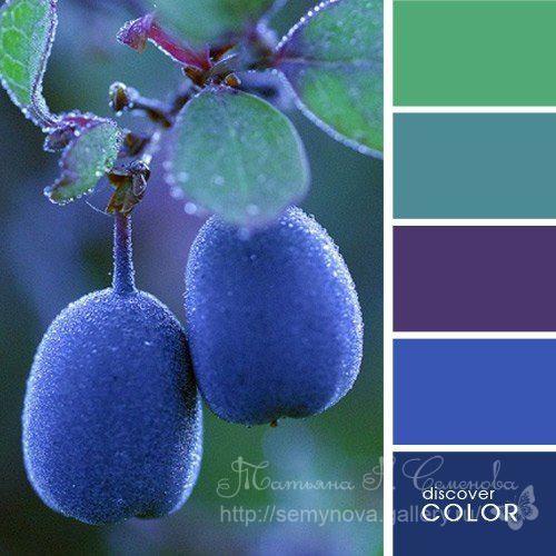 Gallery.ru / Фото #187 - сочетание цвета оттенки сирени и ...